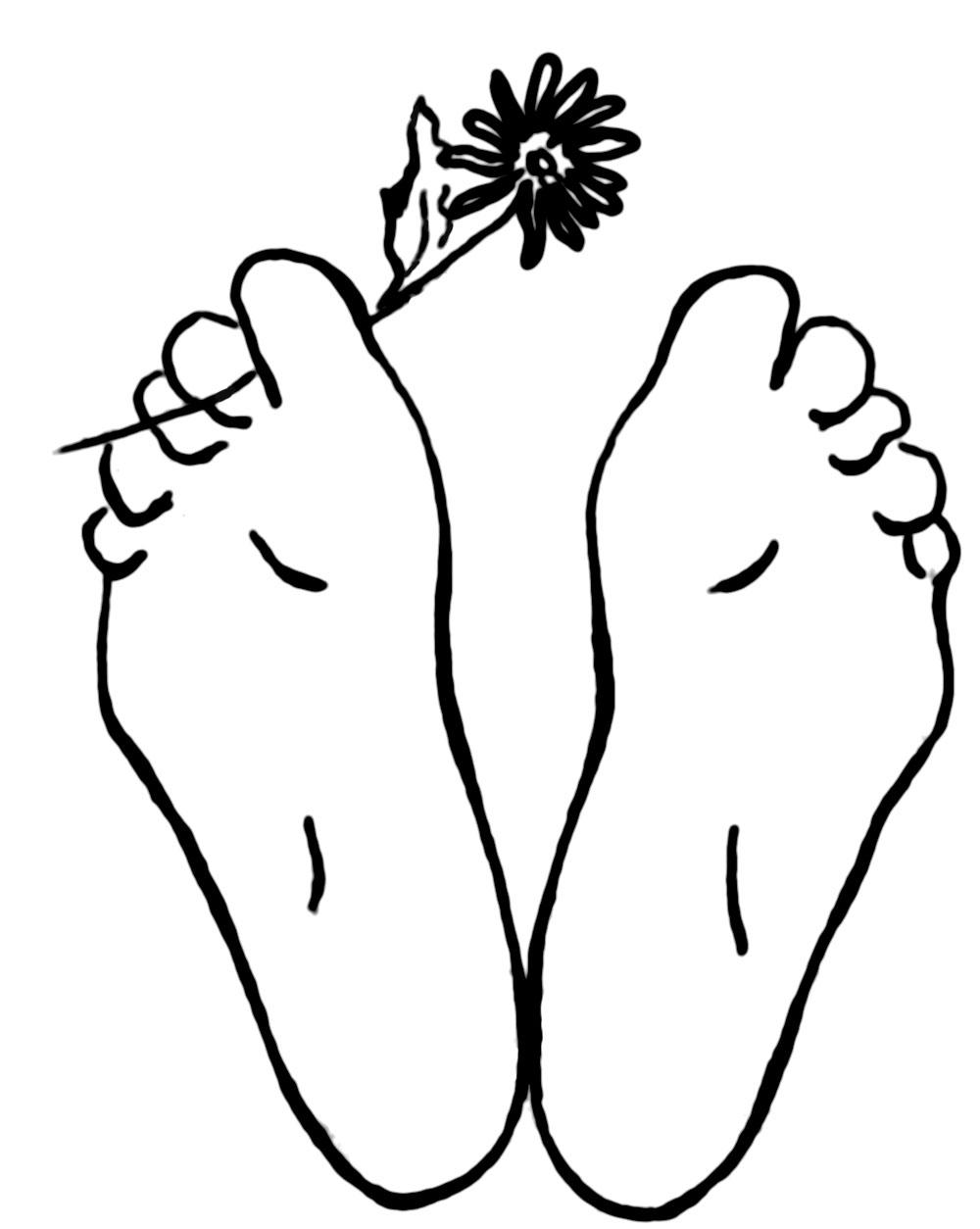 La Plante… des pieds